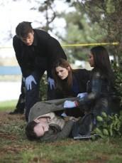 "Nathan Fillion, Stana Katic and Tamala Jones in CASTLE - Season 3 - ""Murder Most Fowl"" | © 2010 ABC/Adam Larkey"