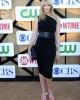 Toni Collette at the CBS/CW/Showtime Summer 2013 Television Critics Party | ©2013 Sue Schneider