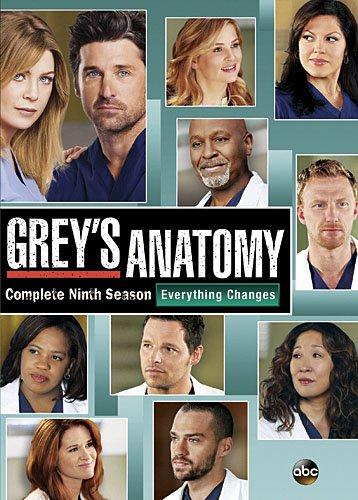 Greys Anatomy The Complete Ninth Season C 2013 Disney Home