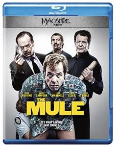THE MULE | © 2015 XLrator