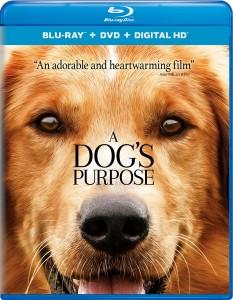 A DOG'S PURPOSE | © 2017 Universal Home Entertainment